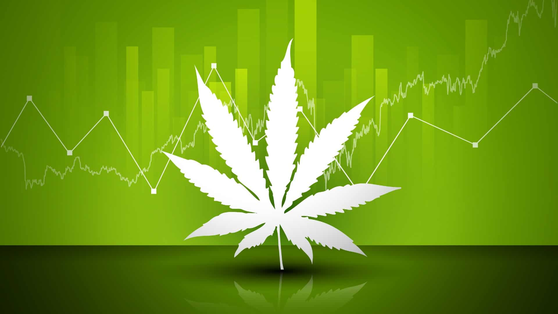 A white cannabis leaf set against a green background with a graph going up, indicating a rising share price for ASX cannabis shares