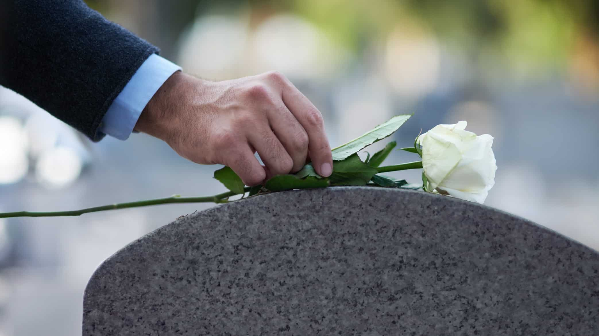 a man's hand lays a white rose on a curved grave stone.