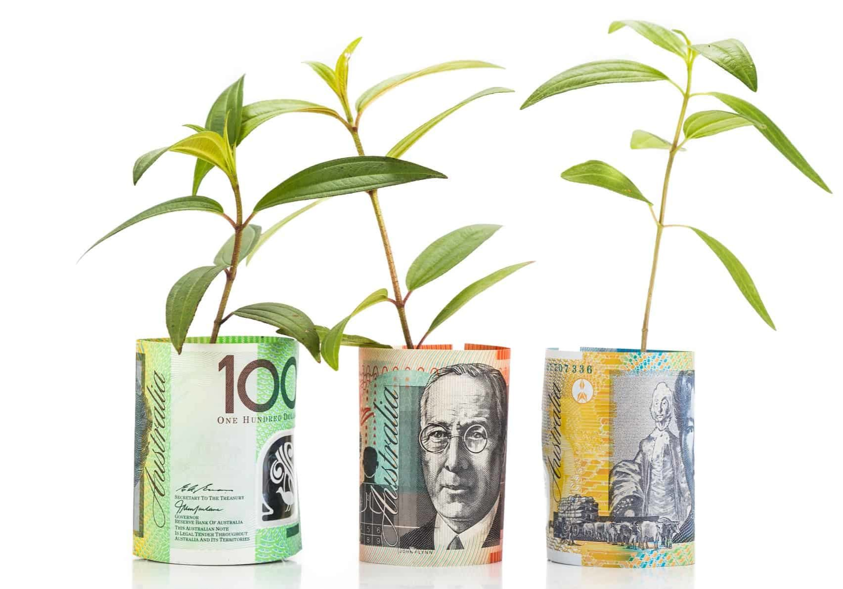 seedling plants growing out of rolls of money representing growth shares